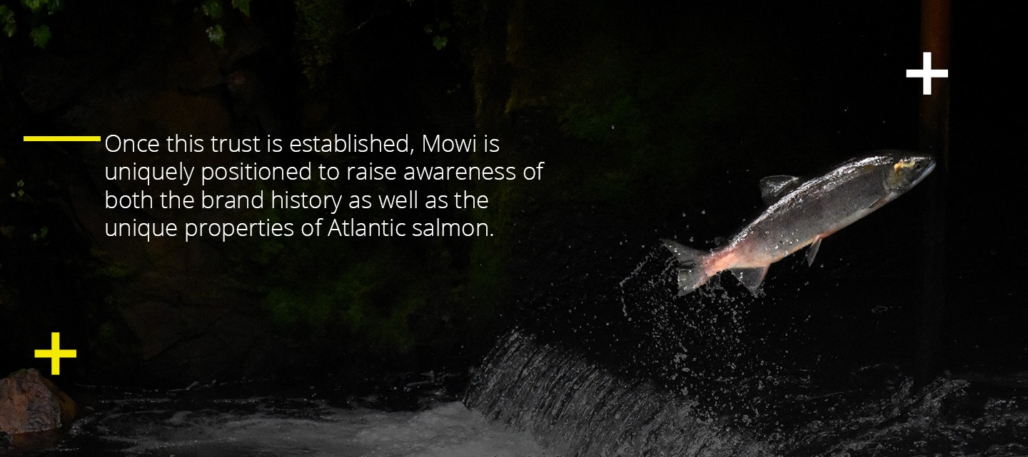 Mowi Salmon, one of UV's clients.