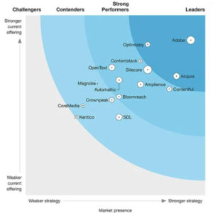 Contentful Flexes its CMS Strengths in the Forrester Wave